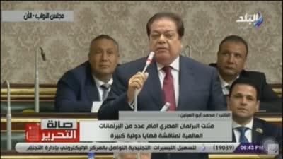 محمد أبو العينين في البرلمان المصري