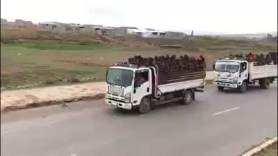 جبهة التقراي تفرج عن أسرى من الجيش الإثيوبي، يوليو 2021